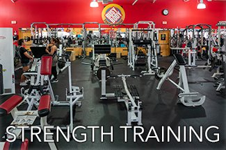 Strength Training Equipment at Busy Body Fitness Center West